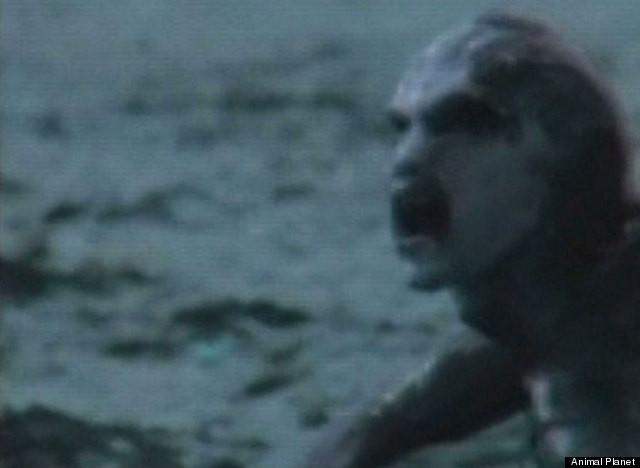Mermaid 3 5 30 2013