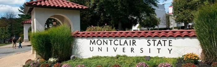 Montcalri State University